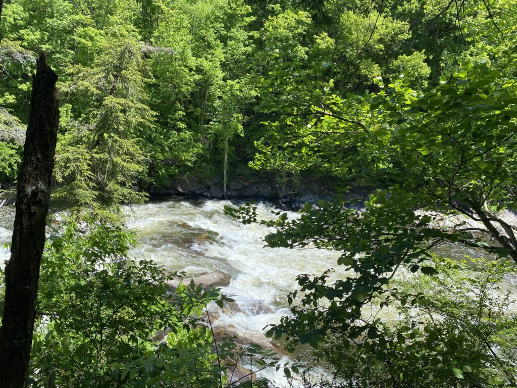 Family-Friendly Hiking Locations in Connecticut